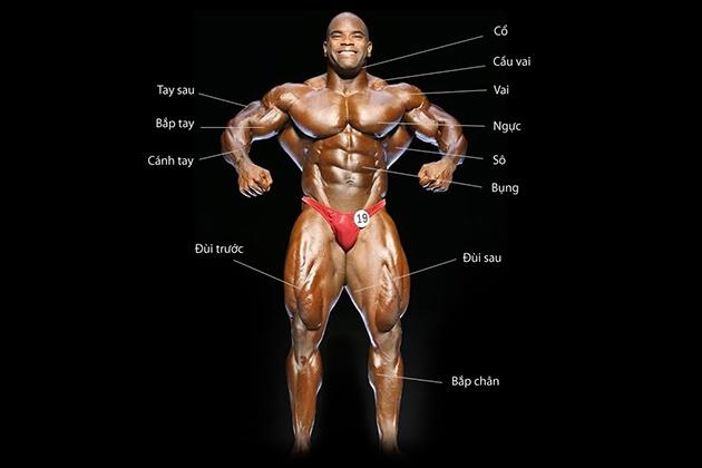 Nguyên tắc xây dựng lịch tập Gym