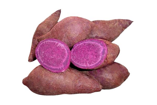 khoai-lang-tim-chua-nhieu-chat-chong-oxy-hoa